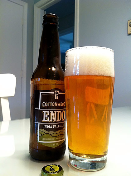 Foothills Brewing Cottonwood Endo photo