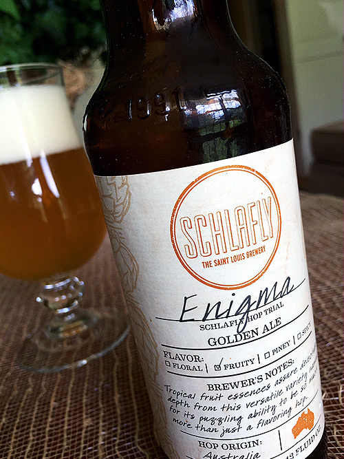 Schlafly Hop