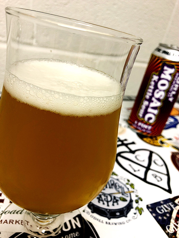 Surly Mosaic Kettle Sour photo